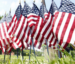 Memoria Day Flags